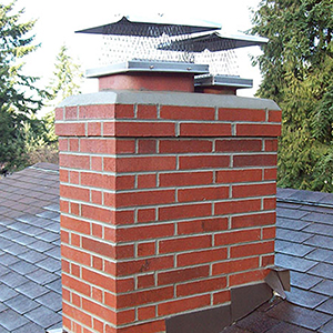 Roofing and Maintenance - chimney repairs