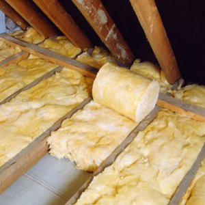 Roofing and Maintenance - insulation